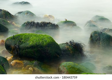Moss covered rocks at the ocean. Long exposure creates the illusion of mist