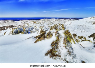 Moss covered rocks on top of Back Perisher mount high in Snowy Mountains of Kosciuszko national park, NSW, Australia, during winter season.