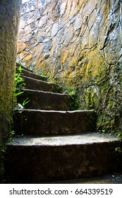 Moss covered spiral stairs