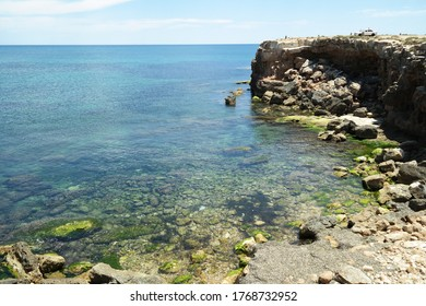 The moss formations in the water at the Los Locos beach, Torrevieja, Spain