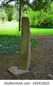 Moss growing on an Ogham Standing Stone in Ireland.