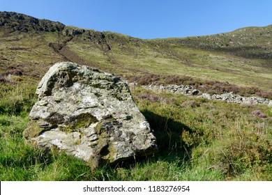 Moss & Lichen covered Rock, The Scurran Sma' Glen, Perth & Kinross, Scotland