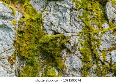 Moss on a rock face. Relief and texture of stone with patterns and moss. Stone natural background. Stone with Moss. Stones boulders covered with moss.