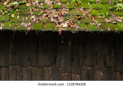 Moss on wood roof,Political And Military School at Phu Hin Rong Kla National Park Phitsanulok Thailand