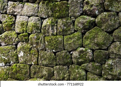 Moss rock wall in Japan
