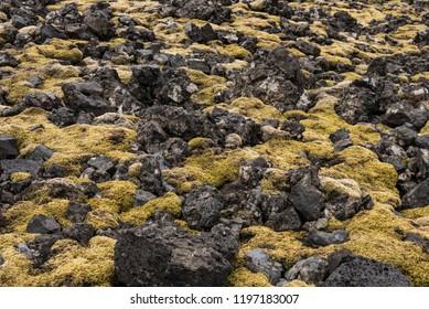 Moss and Rocks terrain at Londrangar, Iceland
