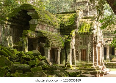 Moss-covered temple and fallen rocks in trees