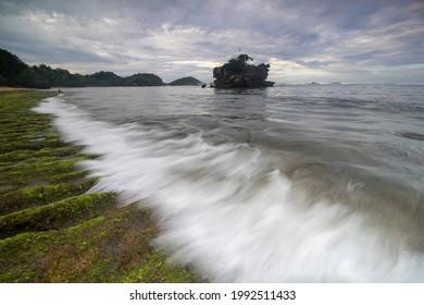 The mossy beach rocks are amazing - Shutterstock ID 1992511433