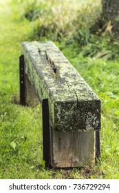 Mossy bench in the woods