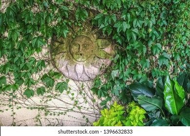 Mossy green man or sun god decorative plaque hanging on stucco fence covered with vines - background