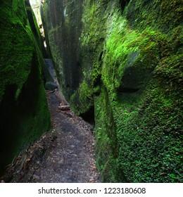 Mossy narrow corridor through giant rocks in Alabama