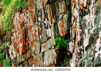 Mossy orange rocky layered surface of mountain with rich vegetations of highlands. Plants, mosses and lichens on cliff. Detailed texture of mountainside with copy space. Textured rock with greenery.