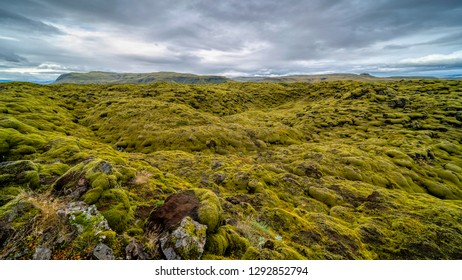 Mossy rocks on the lava field in Eldhraun, South Iceland.