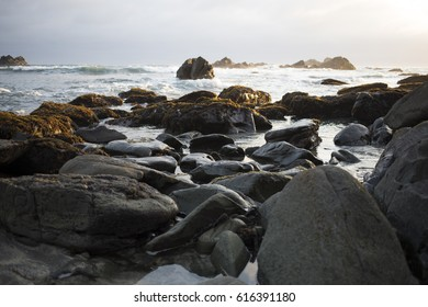 Mossy Rocks and Waves at Sunset Low Tide