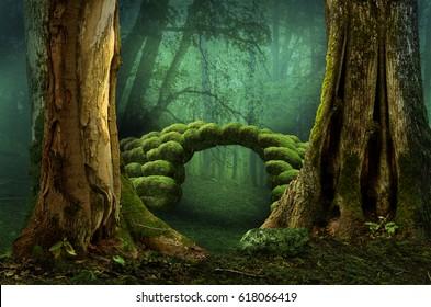 Mossy stone bridge in dark mysterious forest
