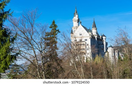 The most beautiful castle  Neuschwanstein in the south of Germany