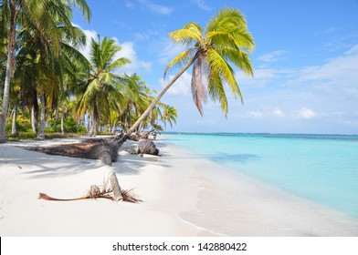 The most beautiful lonely beach in caribbean San Blas island, Panama. Turquoise tropical Sea, Palm Tree, Central America.