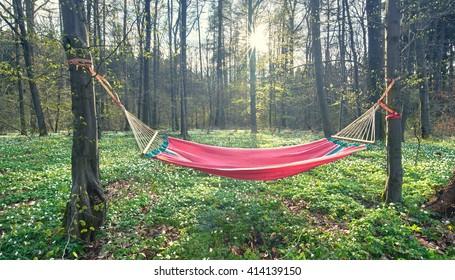 Hammock Camping Images Stock Photos Amp Vectors Shutterstock