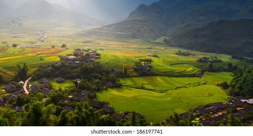 Most Beautiful Rice Terrace in Tule , Mu Cang Chai, Vietnam