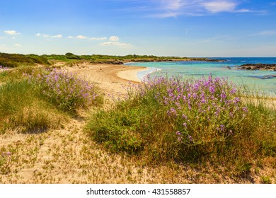 The most beautiful sandy beaches of Apulia. ITALY(SALENTO).From Torre Pali to Pescoluse the shore is made of a so fine white sand and vashed by a so clear sea that it is called 'Maldive of Salento'.
