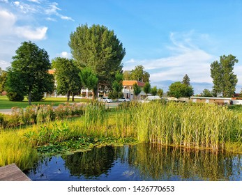 The most iconic view in Beckescsaba Hungary with a small lake with fish and some big green threes, all in one ex-millitary base that is now a luxury hotel