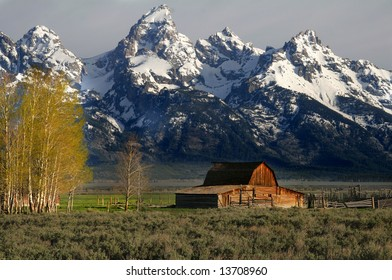 The most photographed barn - Wyoming's residents saved it from decay and had it declared a national historic site