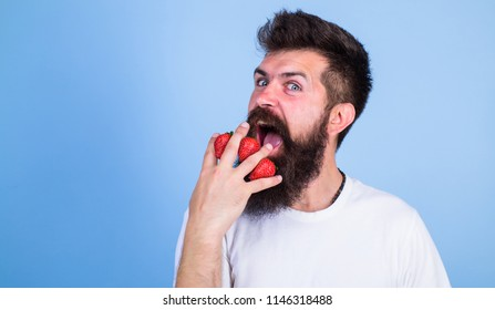 Mostly carbohydrates sucrose fructose glucose. Carbohydrate content strawberry. Metabolic disease. Strawberries safest fruit for sugar levels. Man beard hipster strawberries fingers blue background.