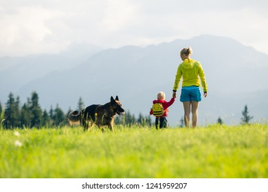 Mother with baby boy walking a dog on green meadow. Hiking adventure with child on summer family trip in mountains. Vacations or weekend activity with child.