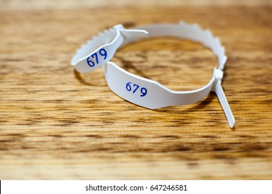 Mother and baby ID wristband.