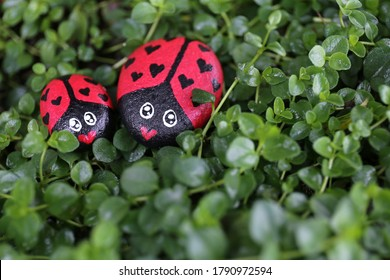 A mother and child couple of painted lady bug rocks with hearts on them sit together on a lush green background of Creeping Thyme.
