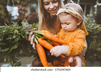 Mother and child daughter with organic vegetables healthy food family lifestyle homegrown beet and carrot local farming gardening vegan nutrition concept