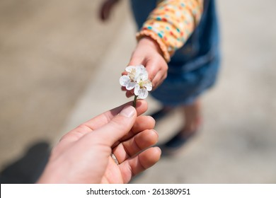 Mother and child to hand over the plum flower