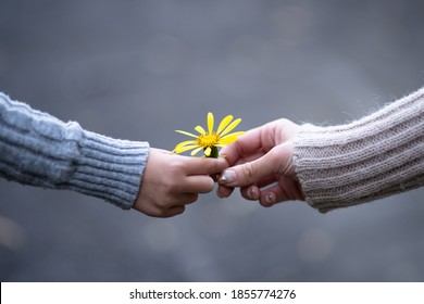 Mother and child handing yellow flower