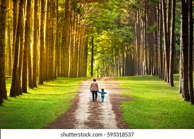 Mother and child are happily walking in the pine forest. Beautiful landscape and  many big trees. Some families come to picnic.It is happy time.The nature of the place is very good.