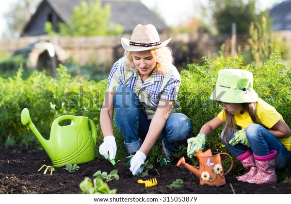 mother and child little daughter planting vegetable in home garden field