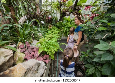 Mother and children looking the plants in greenhouse at botanical garden