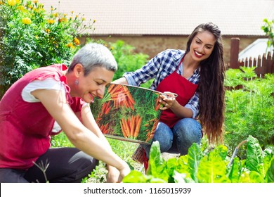 Mother and daughter gardening together planting flowers and tomato plants