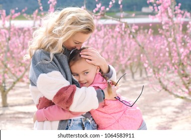 Mother and daughter in a grove of fruit trees in Cieza of Murcia. Blond woman embrace a little girl, pink trees on background. Family in nature, springtime Peach, plum and nectarine trees. Spain