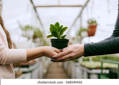 Mother and daughter holding plant