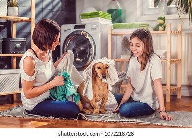 Mother and daughter with small yellow dog sitting on the floor sorting clothes for washing and having fun at laundry room