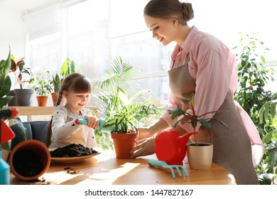 Mother and daughter taking care of home plants at table indoors