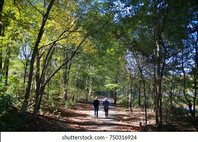 Mother and Daughter Walking Along a Dirt Trail into the Woods Under a Canopy of Green Trees in a Clear Day in Burke, Virginia