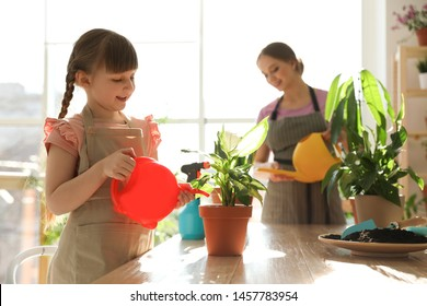Mother and daughter watering home plants at wooden table indoors