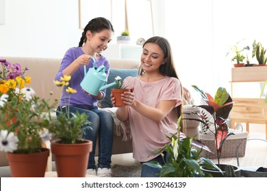 Mother and daughter watering potted plants at home