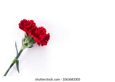 Mother Day Carnation Bouquet