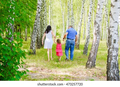 Mother, Father and the Daughter Walk in a Birchwood Summer Sunny Day. Game Walk with the Child in the Park.