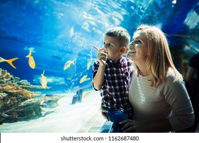 Mother and her child watching sea life