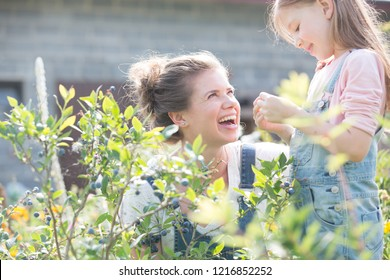 Mother with her young daughter picking blueberries in on their farm