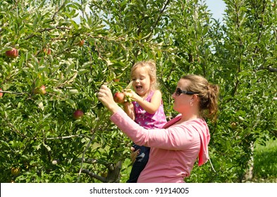 Mother holding an excited girl picking an apple