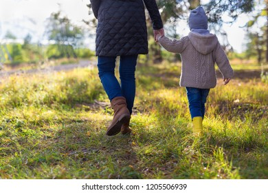 Mother holding her kid's hand while having a walk in the woods. Rear view